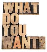 O que você quer pergunta — Foto Stock