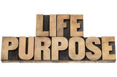 Life purpose in wood type — Stock Photo
