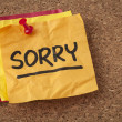 Sorry - apology on sticky note — Stock Photo