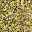 Organnic chamonile herb tea — Stock Photo