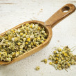 Scoop of chamomile herb tea — Stockfoto