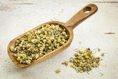 Scoop of chamomile herb tea — Stock Photo