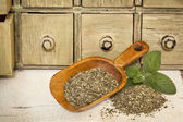 Peppermint herbal tea — Stock Photo