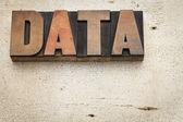 木材の種類のデータ ワード — ストック写真