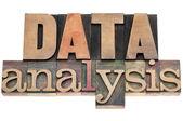 Data analysis in wood type — Stock Photo