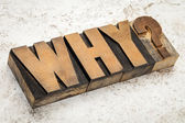 Why question in wood type — Stock Photo