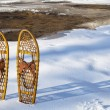 Stock Photo: Classic Bear Paw snowshoes