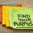 Stock Photo: Find your purpose