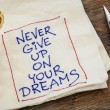 Постер, плакат: Never give up dreams