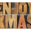 Enjoy xmas (christmas) — Stock Photo #33155553