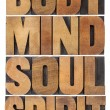 Body, mind, soul and spirit — Stock Photo #34095289