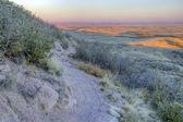 Singletrack bike trail and prairie — Stock Photo