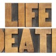 Life and death in wood type — Stock Photo