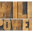 Will power in wood type — 图库照片