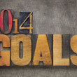 2014 goals in wood type — Stock Photo