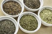 Seaweeds - diet supplements — Stock Photo