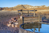 Cattle watering hole in Colorado mountains — Stock Photo