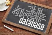 Database word cloud on blackboard — Stok fotoğraf