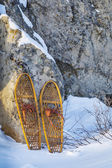 Bear Paw snowshoes — Stock Photo