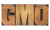 GMO acronym in wood type — Stock Photo