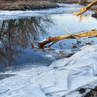 Постер, плакат: Poudre River with icy shores