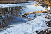 Poudre River with icy shores — Stock Photo