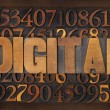 Stock Photo: Digital word in wood type