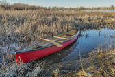 Red canoe in a wetland — Stock Photo