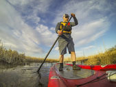 Stand up paddling (SUP) in a wetland — Stockfoto
