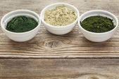 Kelp, spirulina and chlorella — Stock Photo