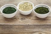 Kelp, spirulina and chlorella  — Stockfoto