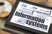 Information systems word cloud — Stock Photo