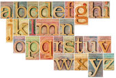 Alphabet in letterpress  wood type — Stock Photo