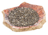 Chia seeds on a pottery shard — Stock Photo