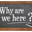 Why are we here question — Stock Photo #45988667