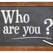 Who are you question — Stock Photo #46095597