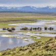 Постер, плакат: Arapaho National Wildlife Refuge