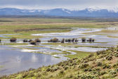 Arapaho National Wildlife Refuge — Stock Photo