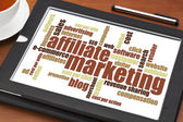 Affiliate marketing word cloud — Stock Photo