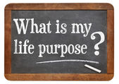 What is your life purpose question — Stock Photo