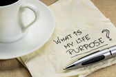 What is my life purpose question — Stock Photo