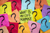 Life meaning concept and purpose — Stock Photo