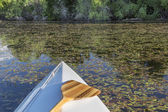 Canoe bow with paddle — Foto Stock