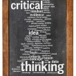 Critical thinking word cloud — Stock Photo #48430955