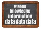 Data and knowledge hierarchy — Stock Photo
