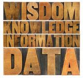 Data, information, knowledge,  wisdom — Stock Photo