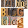 Blog word collage — Stock Photo #50325479