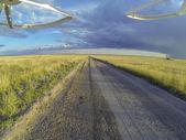 Road in Pawnee Grassland — Stock Photo
