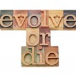Evolve or die - evolution concept — Stock Photo #8535146