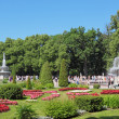 Peterhof — Stock Photo #18196247